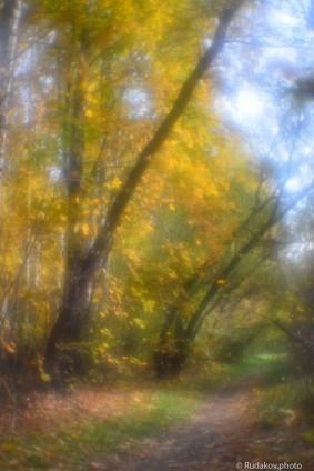 Осень в монокле