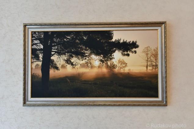 """В интерьере """"Слилися с утренним лучом..."""" Фото на холсте в раме"""