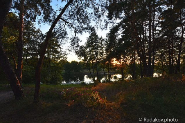 Вечер на Гусь-поляне