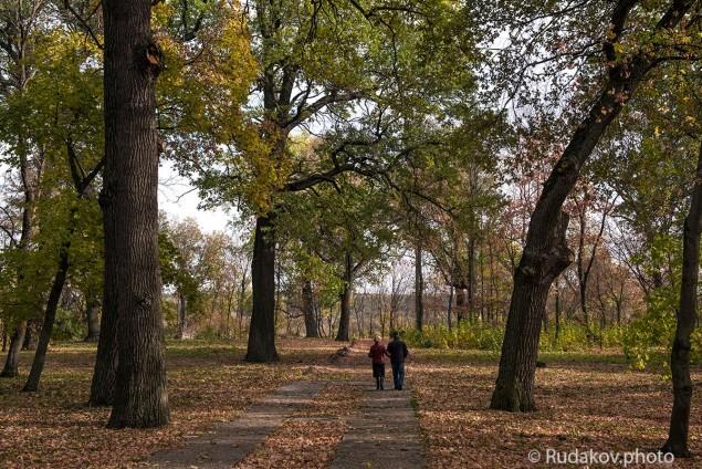 Осень для двоих. Воронцовский парк.