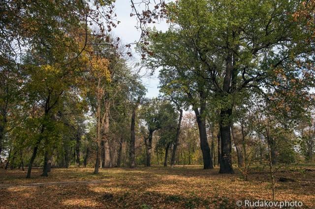 Воронцовская осень