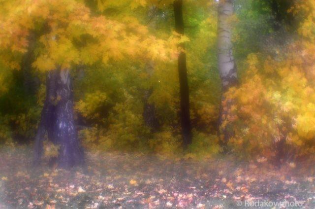 Осень в монокле-2