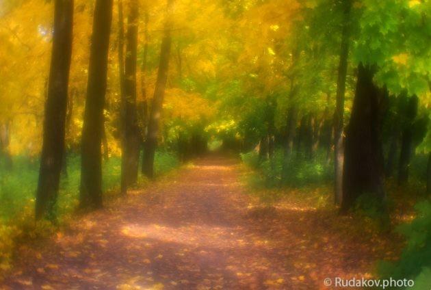 Осень в монокле 5