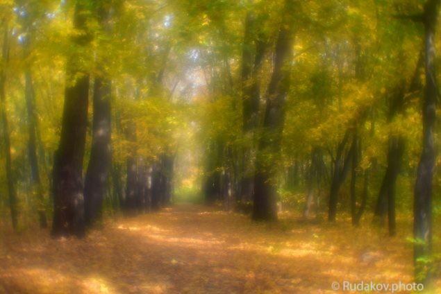 """Золотая осень (из серии """"Осень в монокле"""")"""