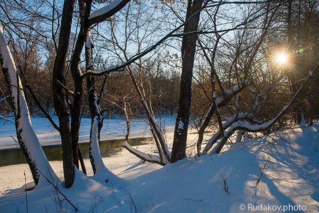 Зимой в Воронинском заповеднике