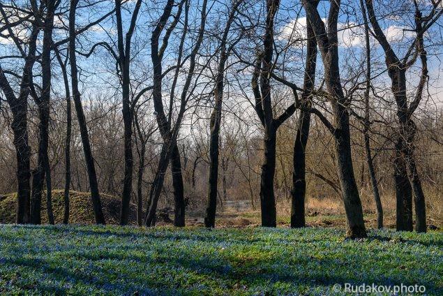 В Знаменском парке с видом на Цну