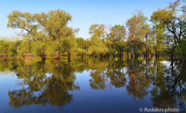 Разлив на реке Вороне