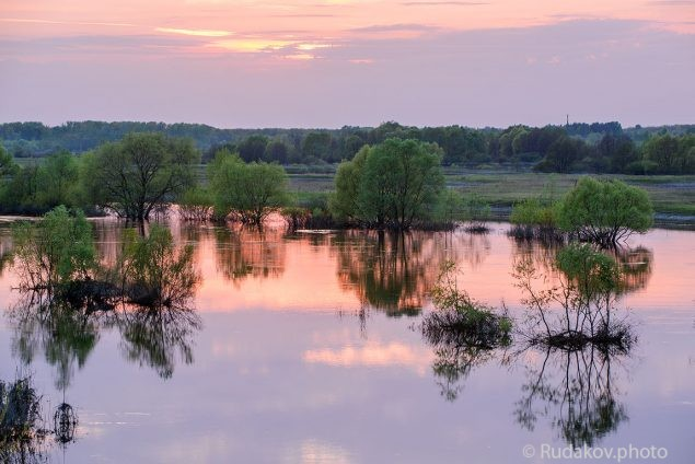 Розовый закат на  полой воде (река Ворона , Тамбовская область, Мучкапский район)