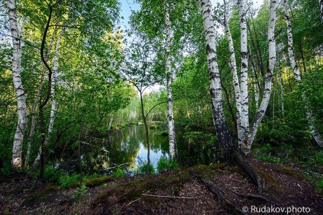 Май на болотах