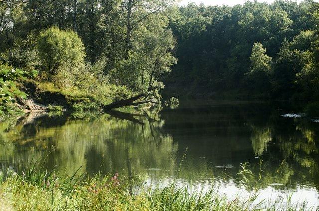 Река Ворона. Свет и тени