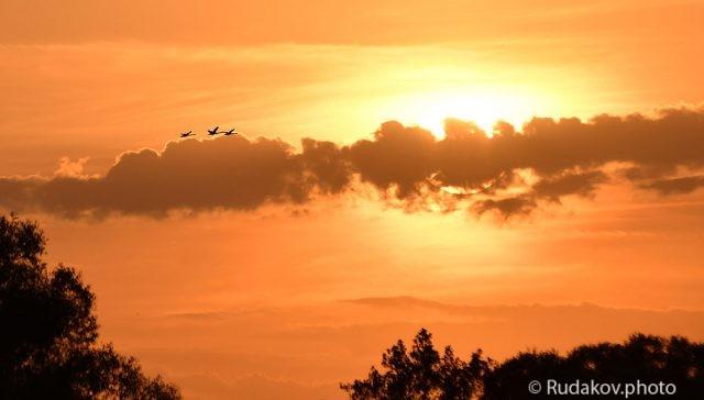 Летящие к солнцу-к