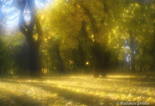 Осень в монокле. Парк усадьбы Кариан- Загряжское
