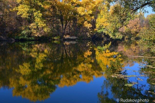 Осень упавшая на воду