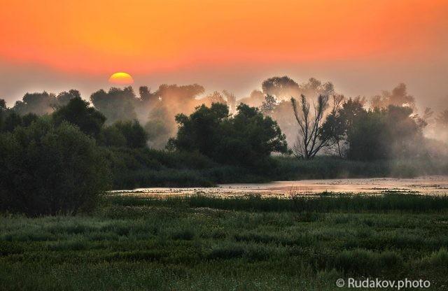 Туманный восход в Дубраве