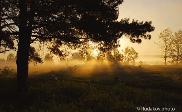 Слилися с утренним лучом края волнистого тумана