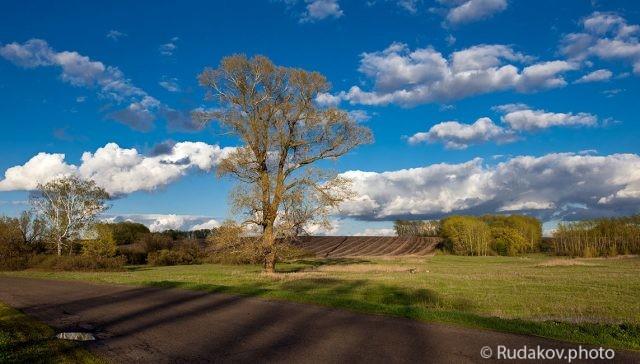 Весенние облака