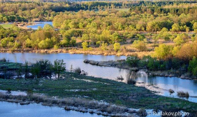 Весна в Воронинском заповеднике