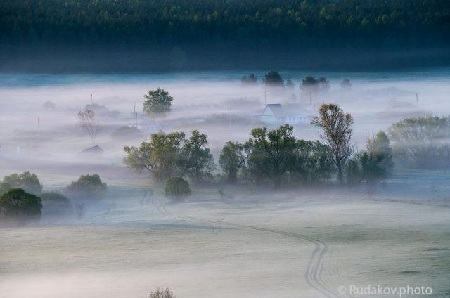 Туманная пастораль