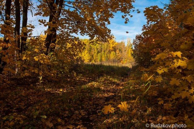 Золотая осень на Шушпани