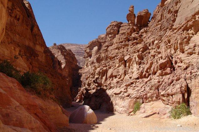 На выжженных скалах Красного каньона. Египет