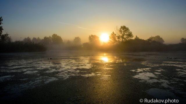 Восход над заводью
