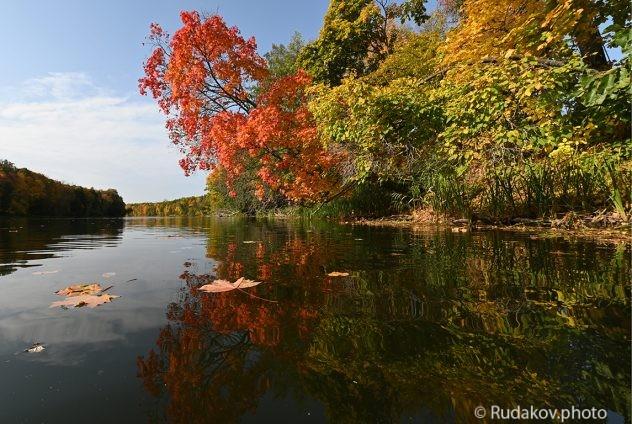 Осень на Вороне