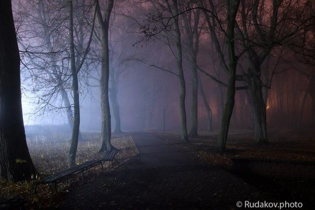 В парке теней